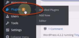 Cara Update Plugins di WordPress3