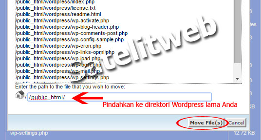 Cara Update WordPress Manual