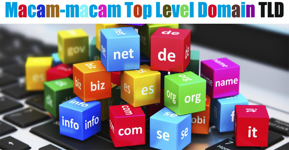 Macam-macam Top Level Domain